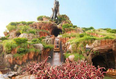 Splash Mountain (c) Tokyo Disneyland