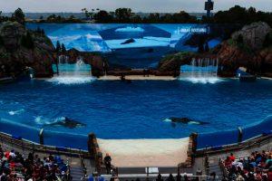 (c) SeaWorld San Diego