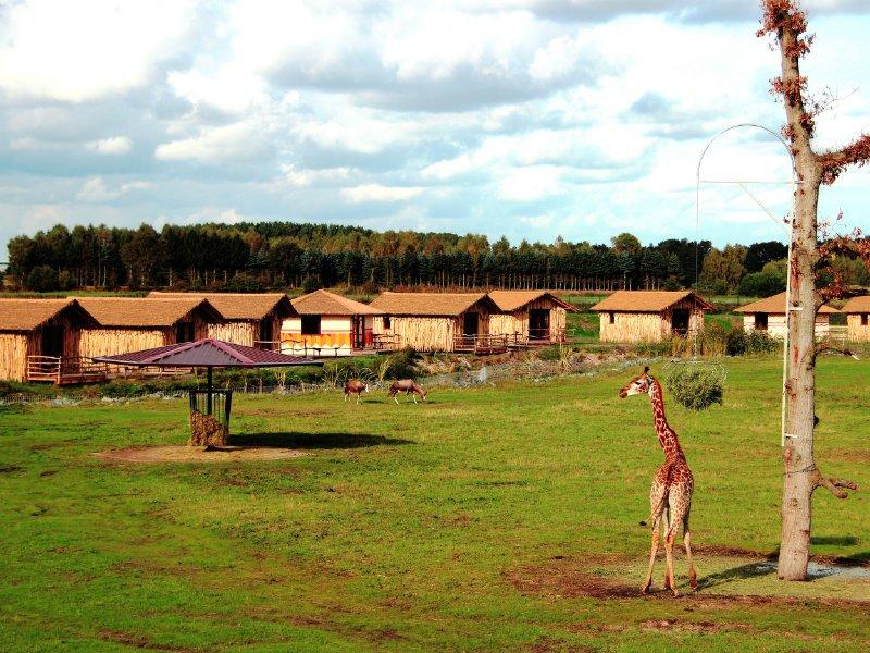 Übernachten in den Masai Mara Lodges (c) Serengeti Park