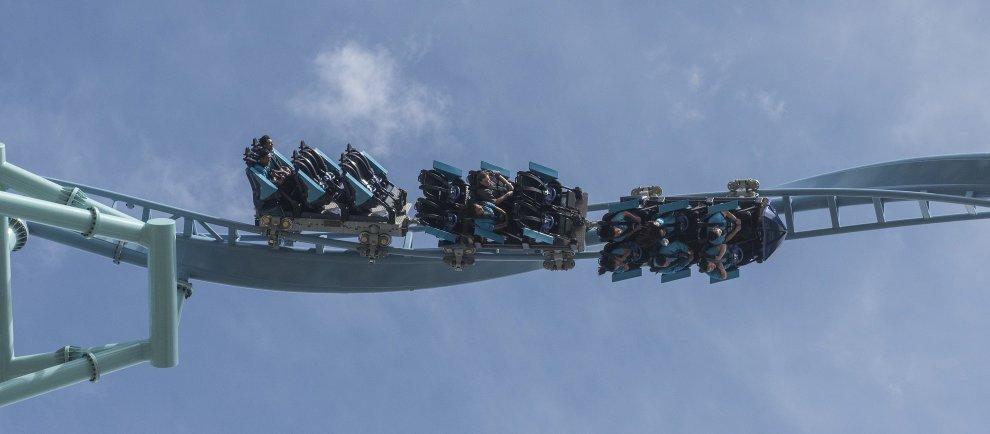 """Electric Eel"" (c) SeaWorld San Diego"