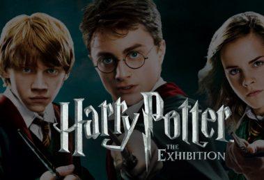 (c) Harry Potter - The Exhibition
