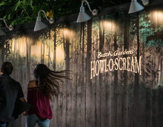 © Busch Gardens Tampa