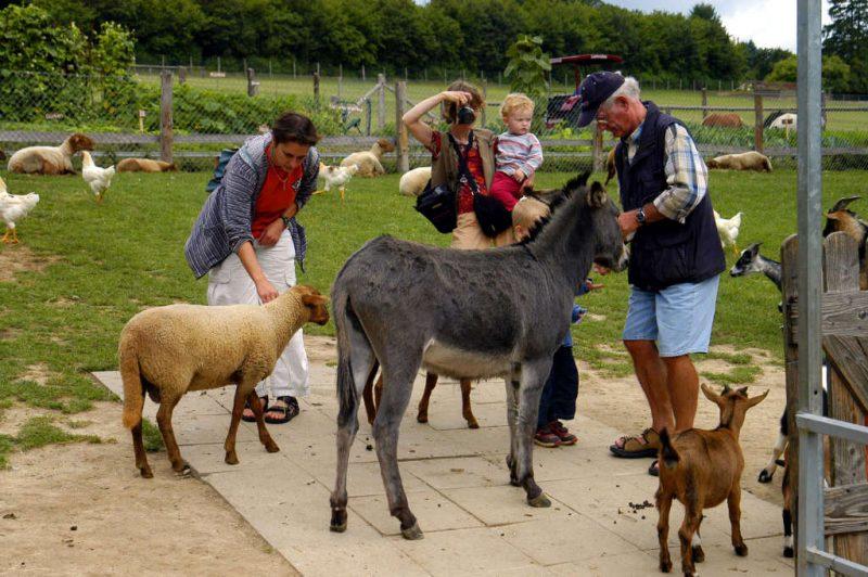 Freizeitpark Lochmuehle Streichelzoo