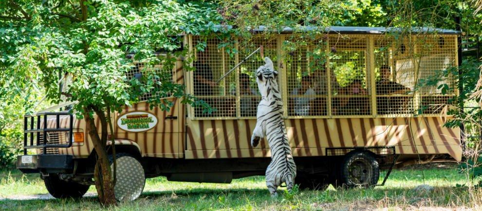 © Serengeti Park Hodenhagen