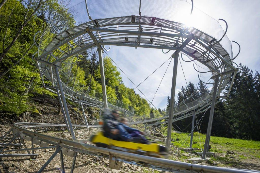 Steinwasen Park Coaster