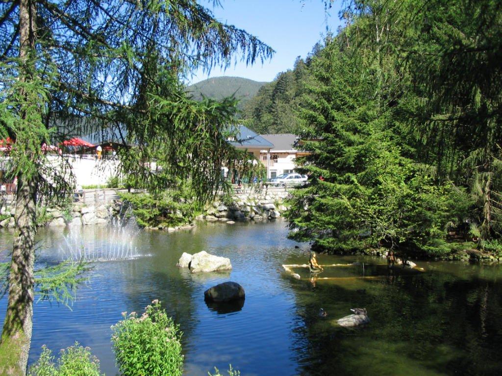 Steinwasen Park See