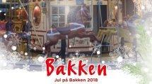 © Bakken