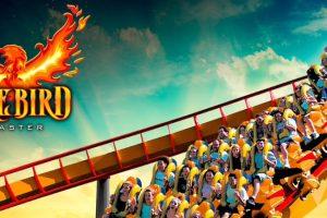 Six Flags America Firebird