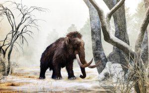 In diesem Jahr geht es zurück in die Eiszeit © Serengeti Park