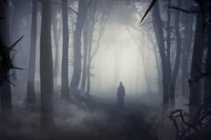 """Mystisch, gruselig und grausam! """"Skogen"""" an Halloween © Liseberg"""