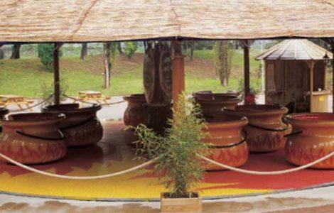 Cannibal Pots © Technical Park